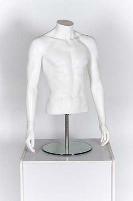 Male Body  Torso White